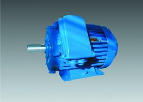 electric motor 6АМУ355S2У2