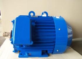 electric motor 6АМУ355М2