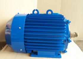 electric motor 6АМУ355М4